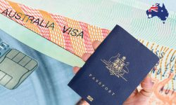 Best Immigration Consultants In Melbourne | Immi Smart