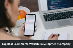 Top Ecommerce Website Development Company