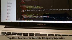 Top Ecommerce Web Designing Agencies