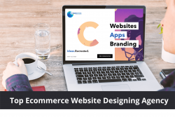 Ecommerce Website Designing Agency