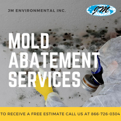 Top-Notch Mold Abatement Vacaville Services