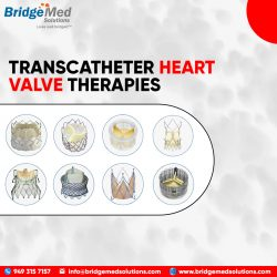 TRANSCATHETER HEART VALVE THERAPIES