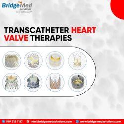 TRANSCATHETER HEART VALVE THERAPIES