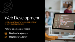 Get High-end Web Development With Our Diligence Work