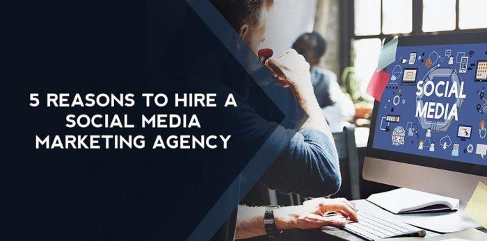 Best Social Media Marketing Agency Florida | Digirabbits