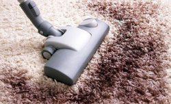 Carpet Cleaning in Arizona | Boss Optima