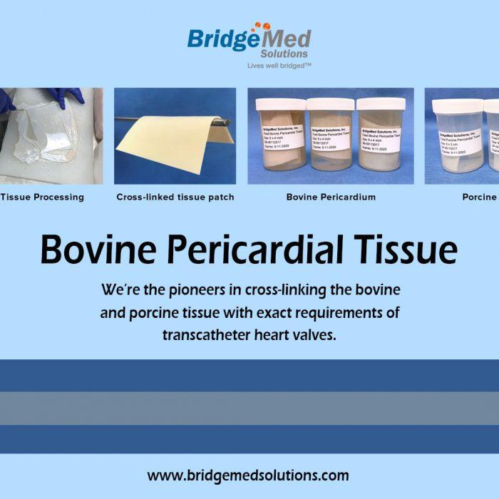 Bovine Pericardial Tissue