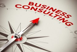 Best Business Consultant In US