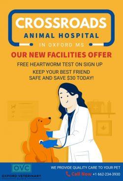 Crossroads Animal Hospital | Veterinarian Near Me in Oxford MS