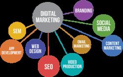 Brittany Jones Kelby Ranch | Expertise in Digital Marketing