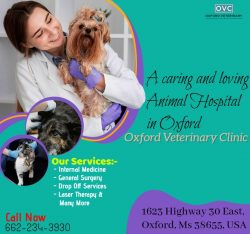 Best Veterinarian in Oxford MS | Animal Hospital Mississippi