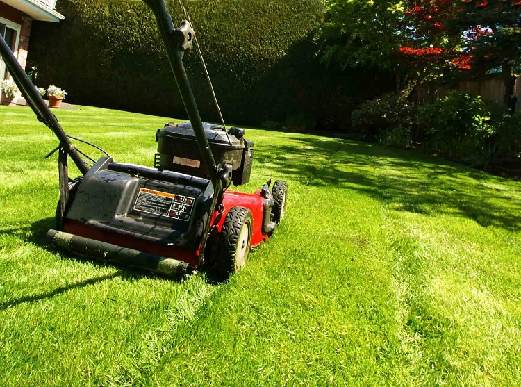 Lawn Mowing Services In Carnegie