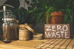 All You Need To Know About Zero Waste Store Australia