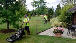 Lawn Mowing Services In Essendon