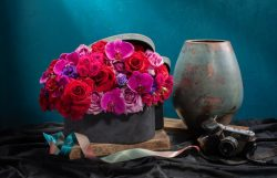Dried Flowers in Singapore | Beato Fiore