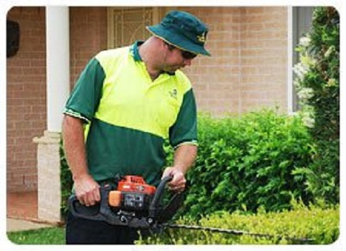 Get Great Lawn Mowing Services Perth