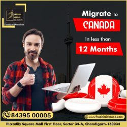 Migrate To CANADA In Less Than 12 Months