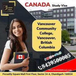 Study In VCC
