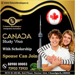 Study In Canada. 👉 With Scholarship