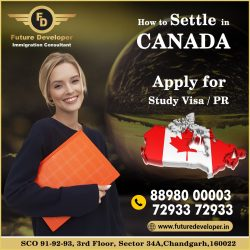 Settle In Canada With Study Visa / PR