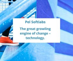 Pel Softlabs is a leading software development company in India