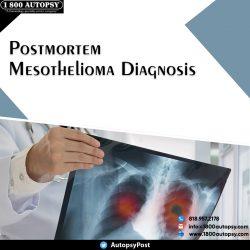 Postmortem Mesothelioma Diagnosis