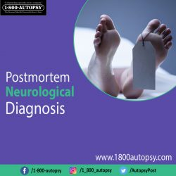 Postmortem Neurological Diagnosis