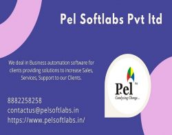 Pel Softlabs Pvt Ltd – leading IT Company