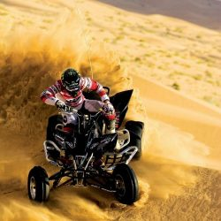 Avail best offer from our side to Abu Dhabi private tour   Expedition experiences