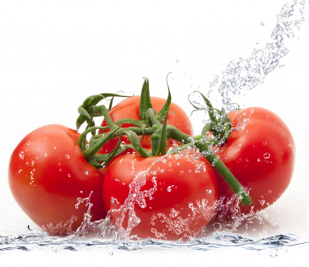Tomato Expertise   John Deschauer