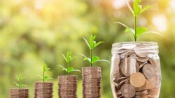 Jamie Goldstein Boca Raton | Experienced Investor