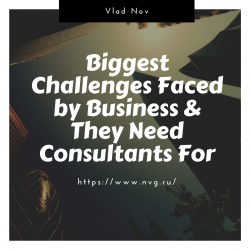 Vlad Nov – Biggest Challenges Faced by Business & They Need Consultants