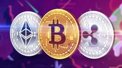 Which Is The Best Crypto In The Long Term