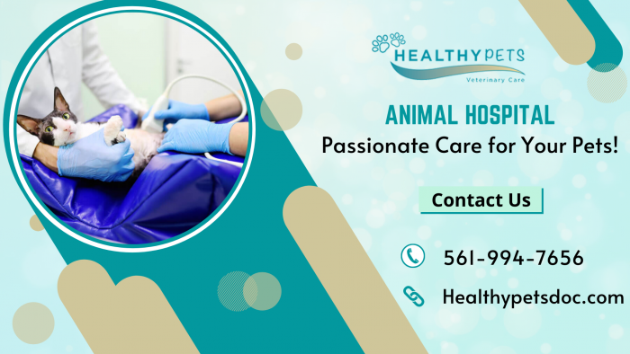 Get Comprehensive Veterinary Care for Your Pets!
