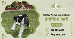 Get Safe and Durable Artificial Turf for Your Pets!