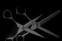 Waukesha Mens Haircut