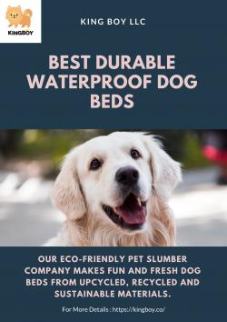 Best Durable Waterproof Dog Beds