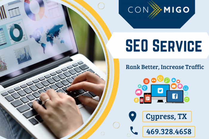 Best SEO Services in Texas
