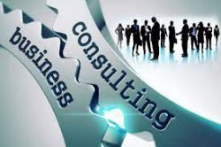 Sales And Business consultant