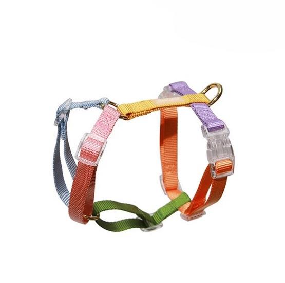 Buy Easy Walk Harness