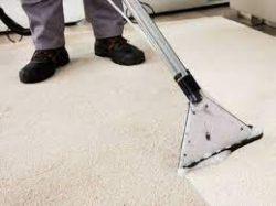 Best Carpet Cleaning in Arizona   Boss Optima