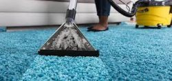 Most Reliable Carpet Cleaning Services   Boss Optima