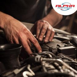 Suitable and Professional Services of Alpha Cars in Mesa, USA