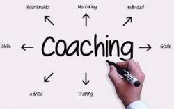 Get The Best Business Coaching Skills | Bernard O'Brien