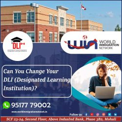Can You Change Your DLI (Designated Learning Institution)?