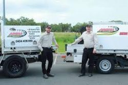 Looking for cheap pest control Gold Coast