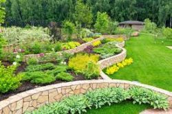 Professional Landscapers in Canada