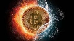 Cryptocurrency Expert & Investor – John Jesse Breslin