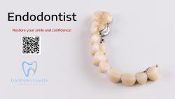 Affordable Endodontist In Florida