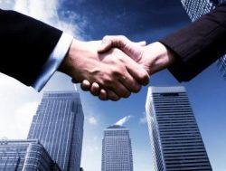 Specialist Real Estate Agent | Bryan Provenzano